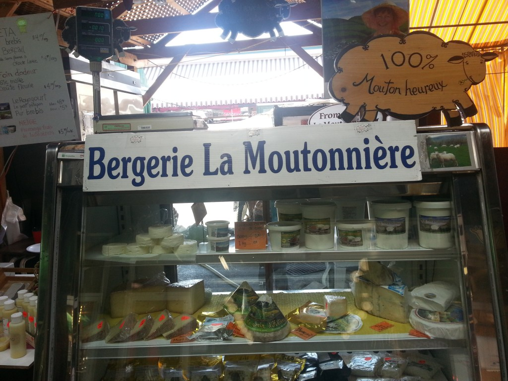 berger-la-moutonniere